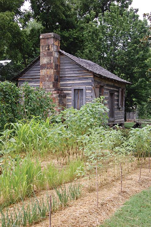 smoh-cabin